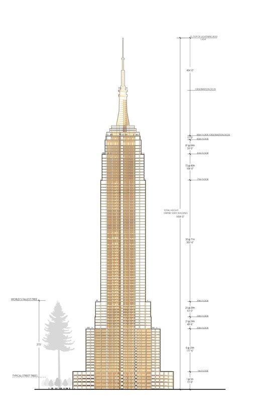 Empire State Building madera sección