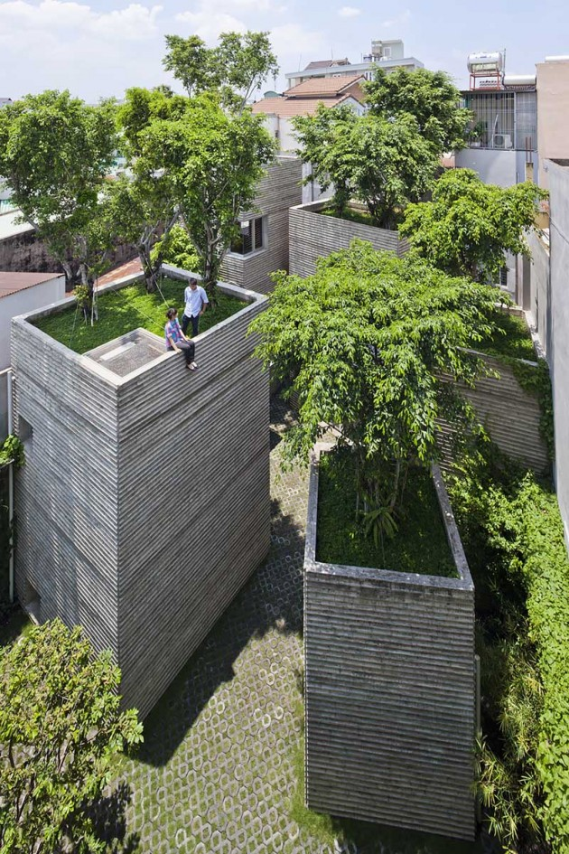 House for Trees desde arriba
