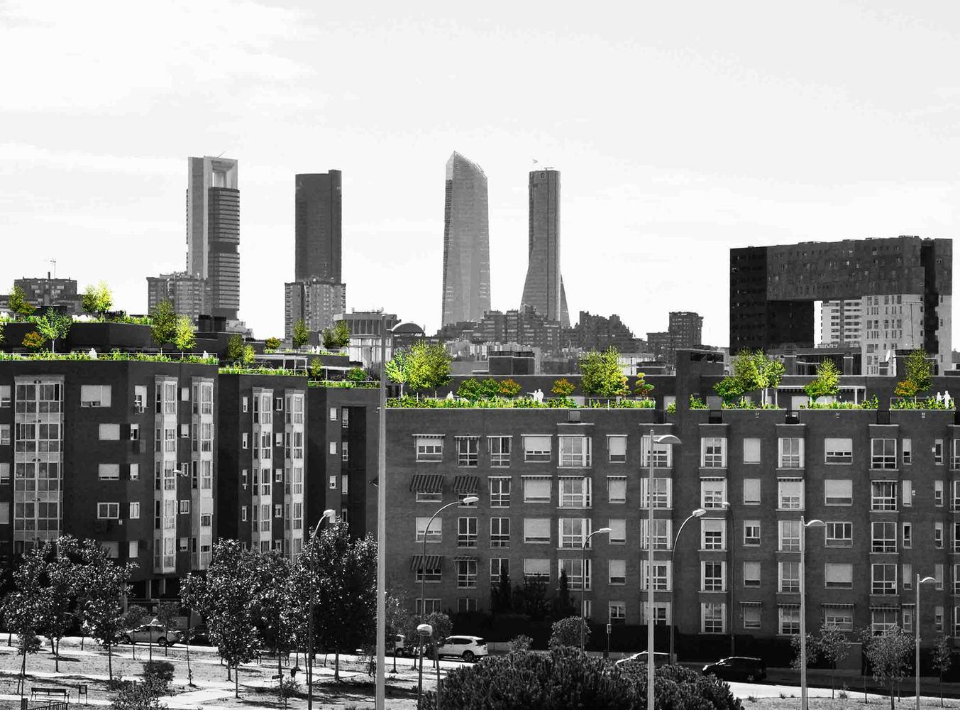 Madrid + Natural cubeirtaas verdes