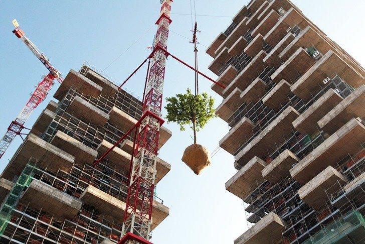 Bosco verticale, construccion y plantas (imagen de marco-garofalo)