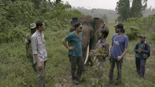 Imagen del documental en una selva asiática
