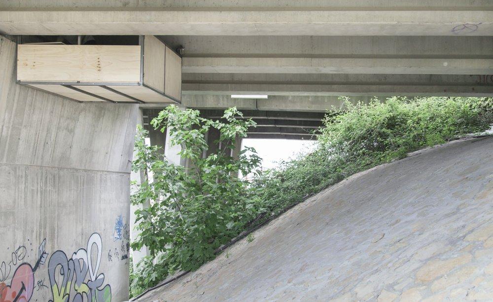 refugio-puente-valencia