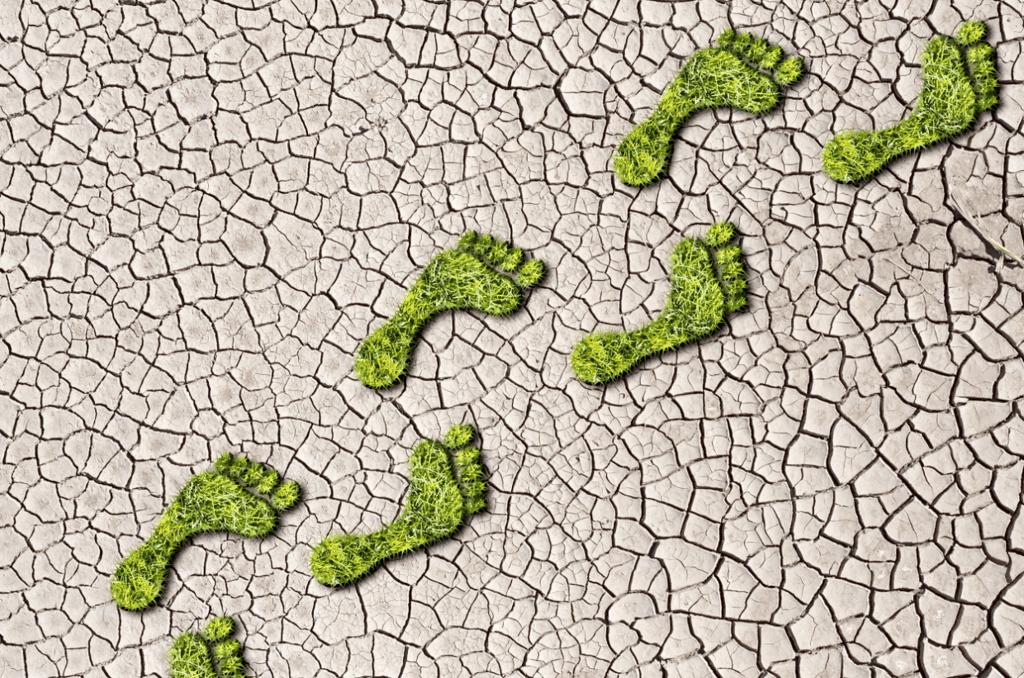 Huella de carbono y eficiencia